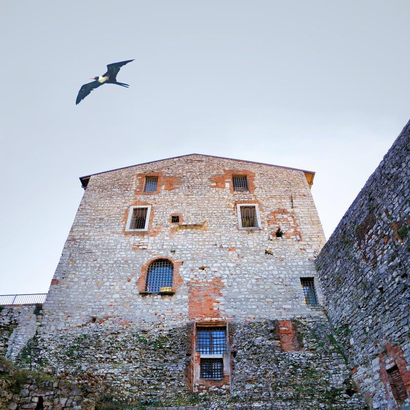 Vägg i medeltida byggnad royaltyfria bilder