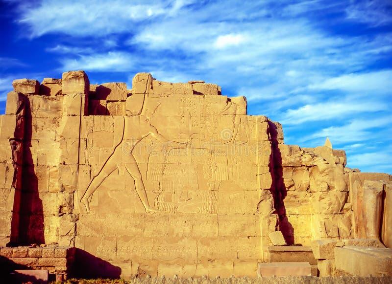 Vägg på templet i Luxor fotografering för bildbyråer