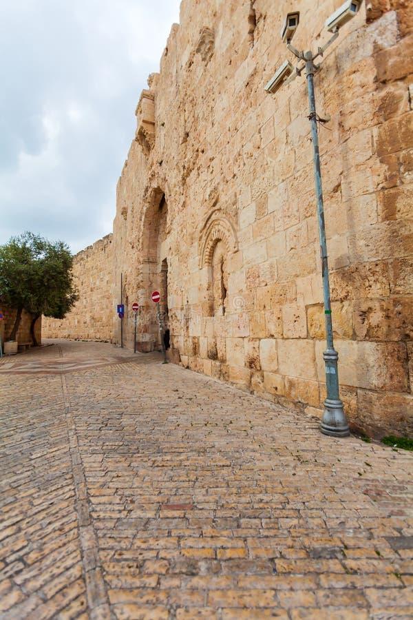 Väggar av den forntida staden och palmträdet, Jerusalem royaltyfria foton