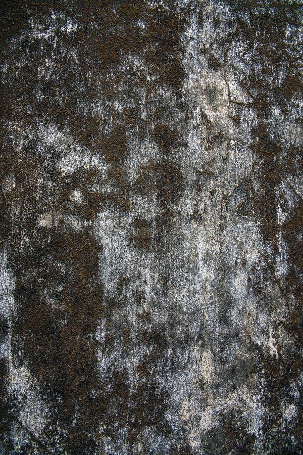 Väggbakgrund, abstrakt begrepp eller textur. arkivbild