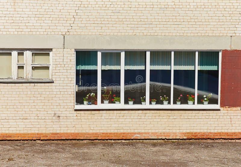 Väggen av den gamla tegelstenbyggnaden, med ett fönster med träramar, på fönsterbrädan blommar pelargon royaltyfri bild