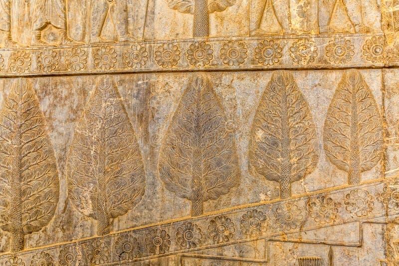 Vägglättnad i Persepolis royaltyfri fotografi