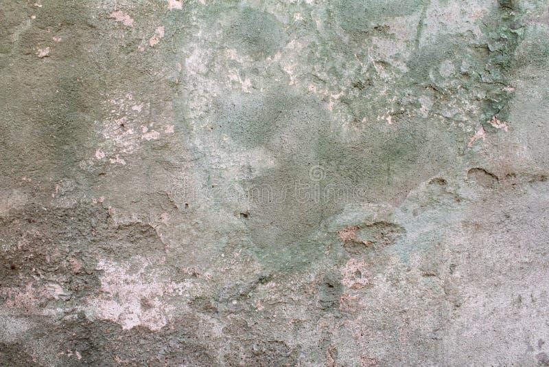 Väggmörker - grön textur arkivfoton