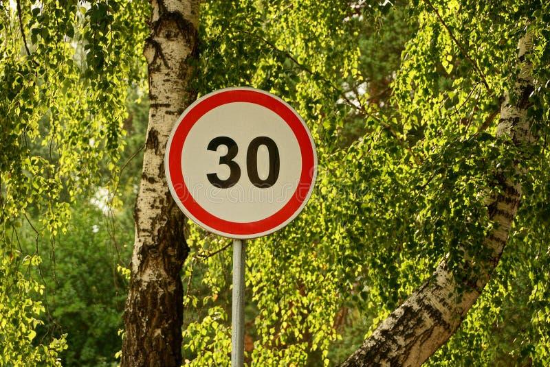 Vägmärkehastighetsbegränsning nära en väg för björkträd arkivfoto