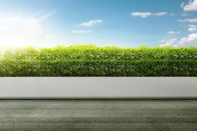 Vägsidan på gräsplanen parkerar arkivfoton