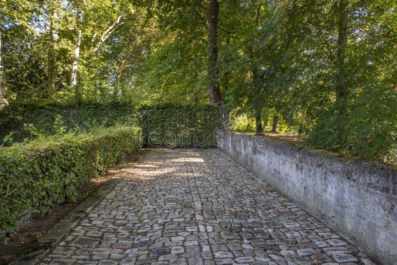 Vägspring under träd i parkerar av chateauen Azay-le-Rideau, Loire Valley, Frankrike arkivbild