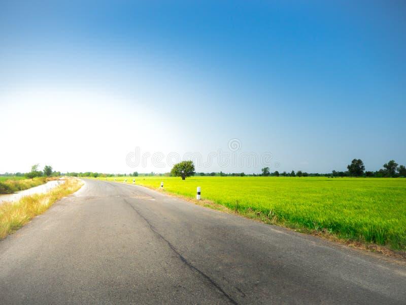 Vägväg på grön äng i den blåa himlen arkivfoton
