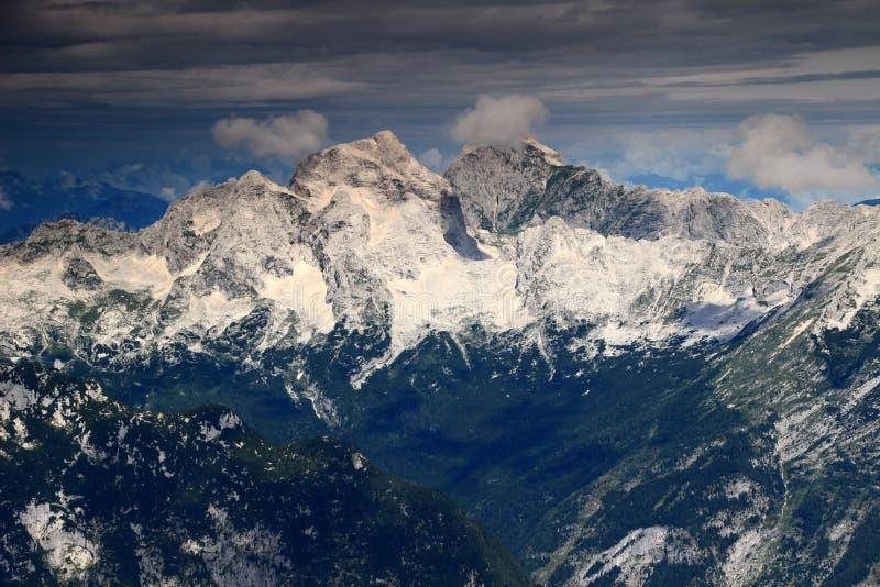 Väldiga Jalovec och Mangart maxima och pinjeskogar, Julian Alps royaltyfria foton