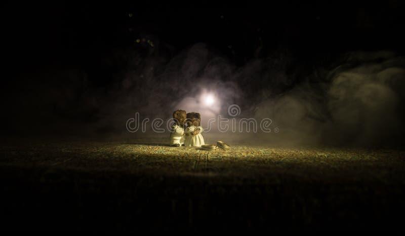 Välfyllda brud- och brudgumbjörnar som står samman med LEDD hjärta på mörk dimmig bakgrund royaltyfri fotografi