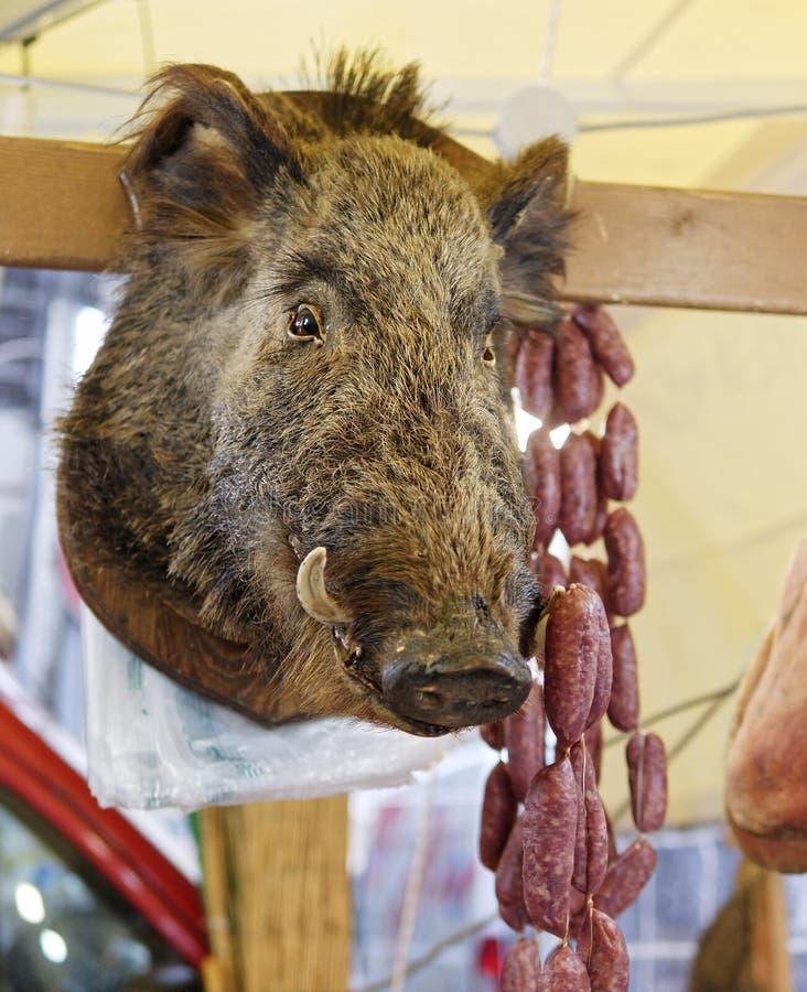 Välfyllt vildsvinhuvud på en träpanel framme av en shoppa i L arkivfoto