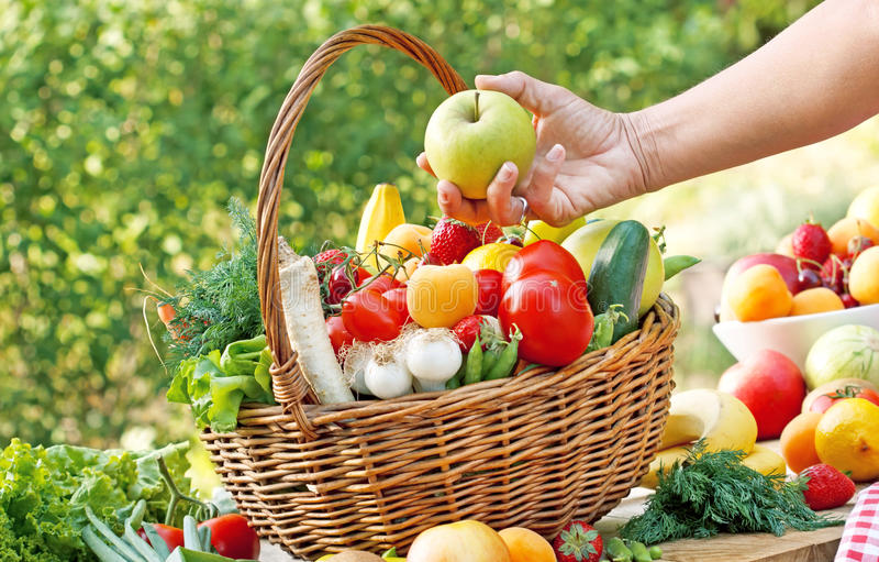 Välj de högra de nya och organiska frukterna och grönsakerna royaltyfria bilder