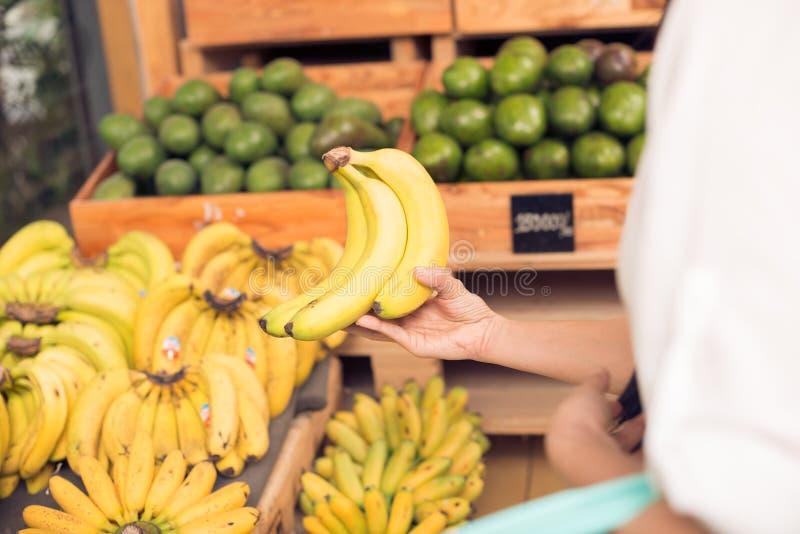 Välja bananer royaltyfri foto