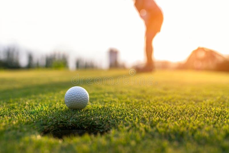 Väljer den asiatiska kvinnan för golfaren som sätter golfboll på den gröna golfen på tid för soluppsättningafton, fokusen royaltyfria foton