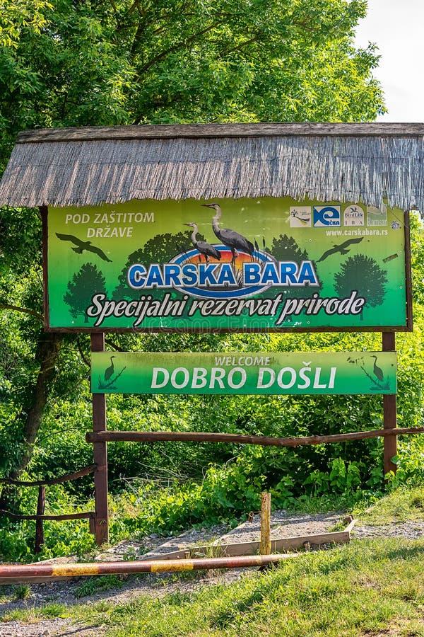 Välkommet bräde av 'Carska Bara 'den speciala naturreserven Typisk landskap på träskområde av Imperi royaltyfria foton