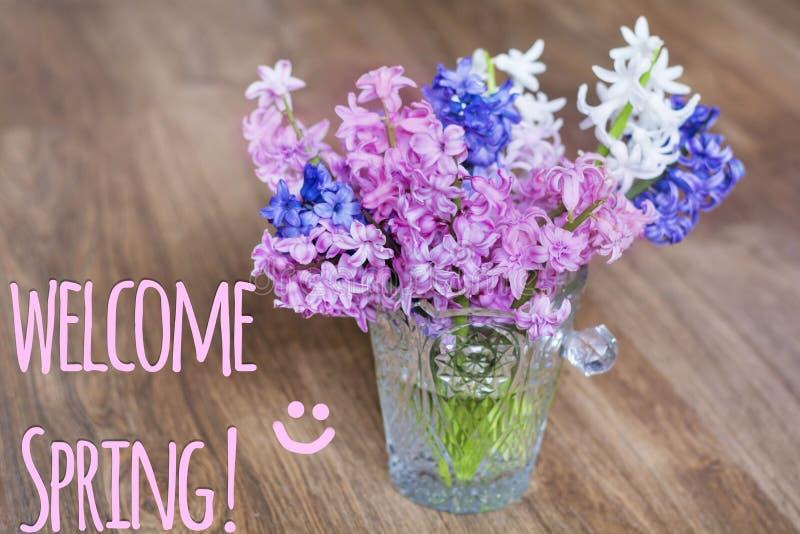 Välkommet vårmeddelande med härliga blommor royaltyfri fotografi