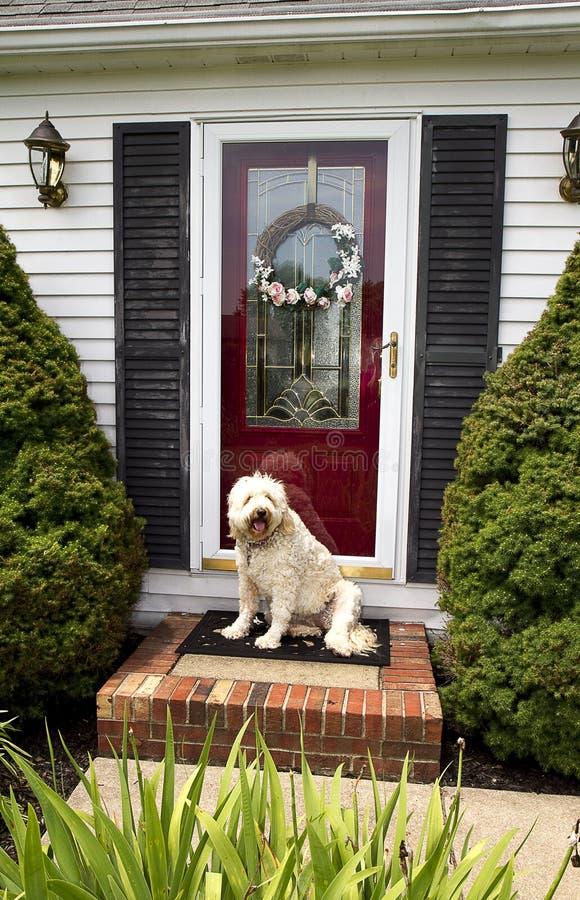 Välkomnandehem (Front Door w/Dog) arkivbilder
