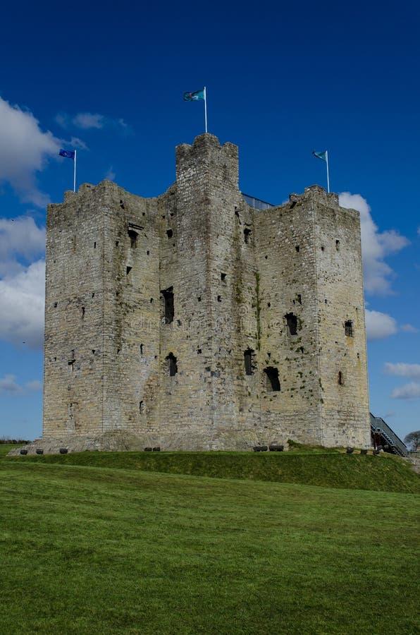 Välskött slott, Irland royaltyfria bilder