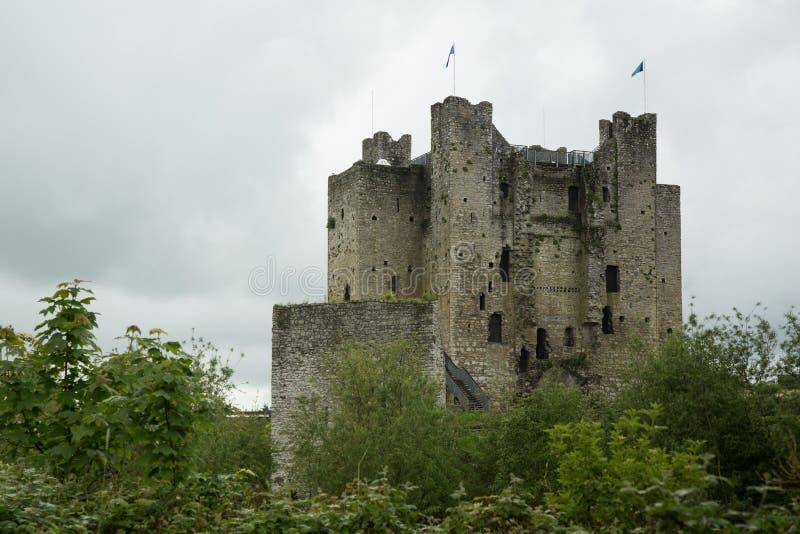 Välskött slott, klippning, Irland arkivbilder