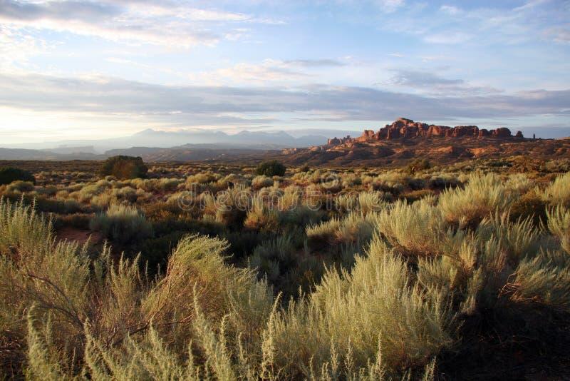 välva sig nationalparken utah royaltyfri foto