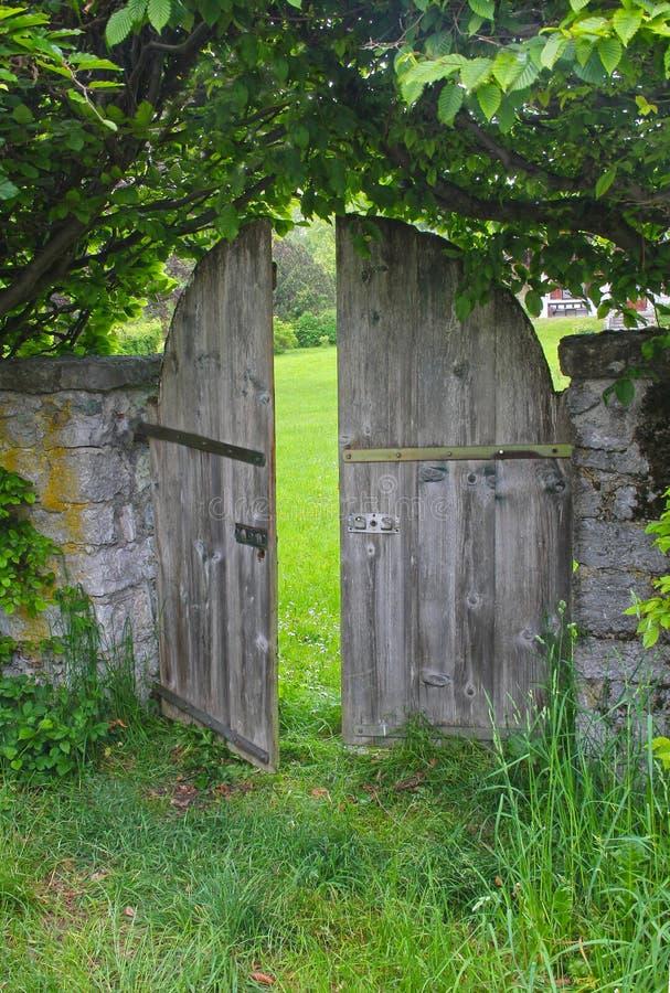 Välvd trädgårds- dörr som inramas med bokträdhäcken royaltyfri bild