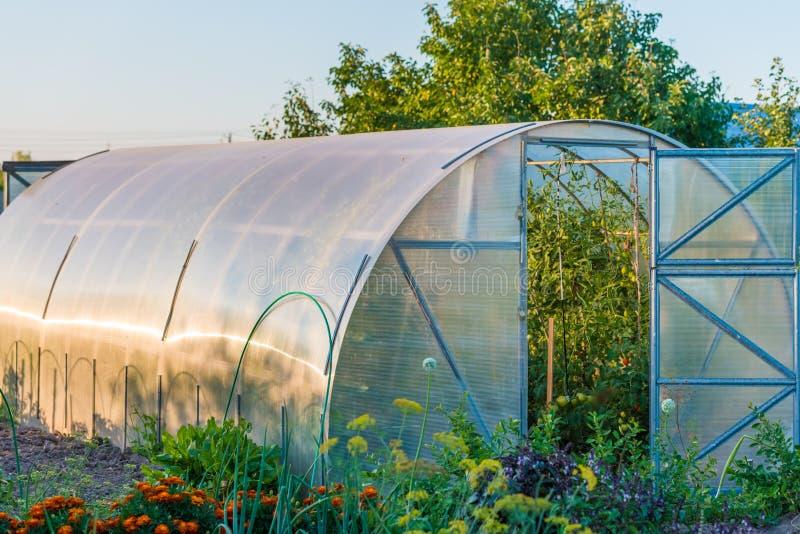 välvt växthus royaltyfri foto