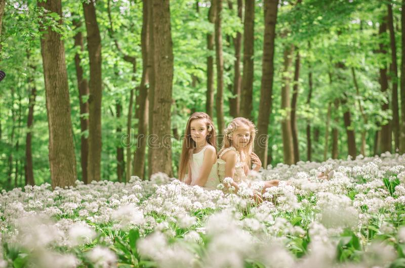 Vän som är utomhus-, i att blomstra skogen arkivfoto
