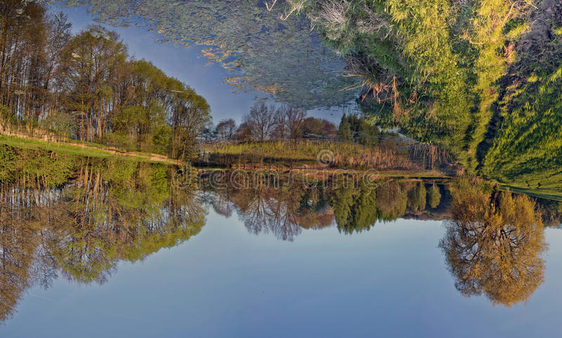 Vänd om reflexion: träd och himlar reflekterade i yttersidan av arkivfoton