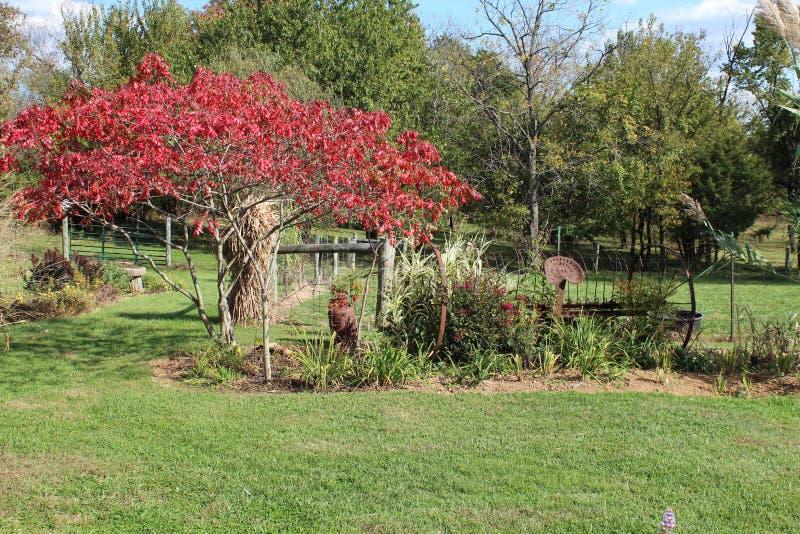 Vändande sidor och rostad lantgårdutrustning i höst royaltyfri bild