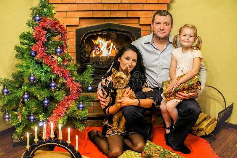 Vänlig familj med en julgran och en spis royaltyfria foton