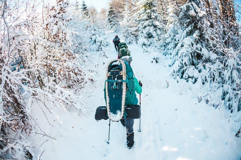 Vänner i vintern som trekking i bergen royaltyfri bild