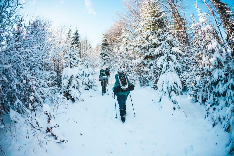 Vänner i vintern som trekking i bergen fotografering för bildbyråer