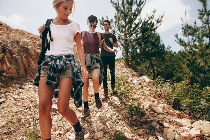 Vänner på en semester som fotvandrar i en skog royaltyfria foton