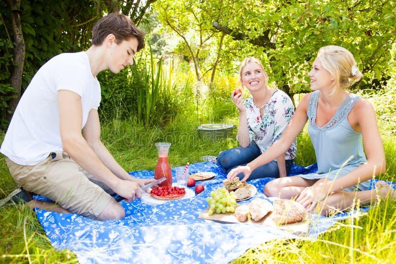 Vänner som har en picknick arkivbild