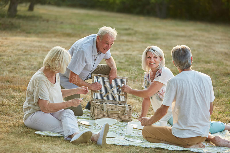 Vänner som har en picknick tillsammans i parkera i sommar royaltyfri foto