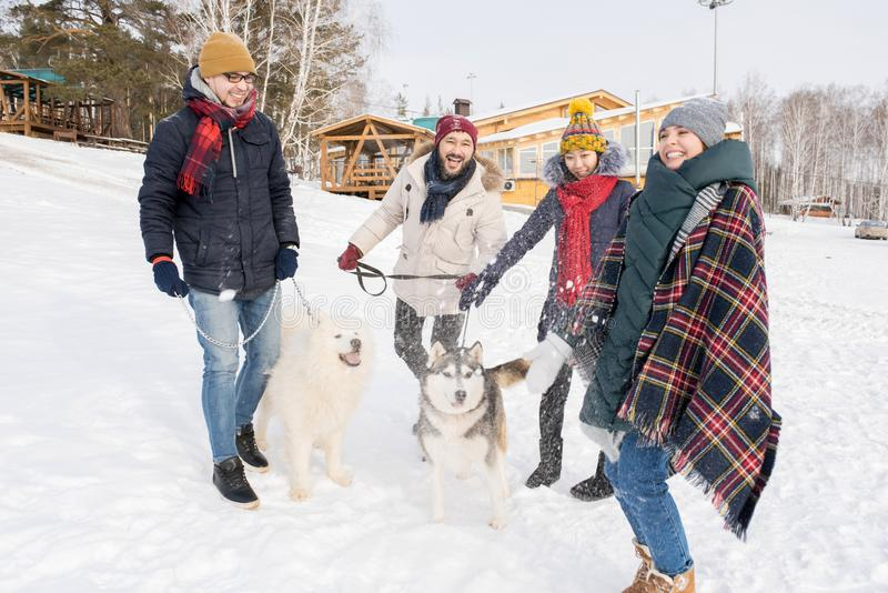 Vänner som har gyckel med hundkapplöpning royaltyfri foto