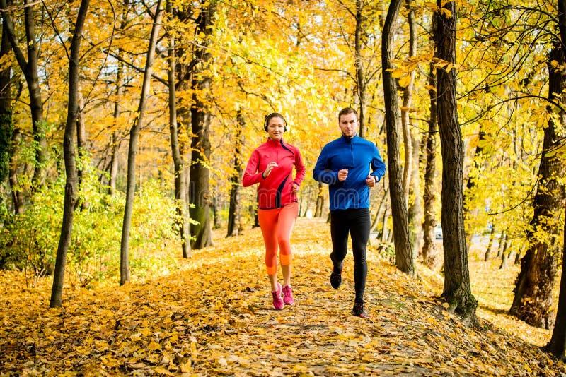 Vänner som joggar i höstnatur royaltyfri bild