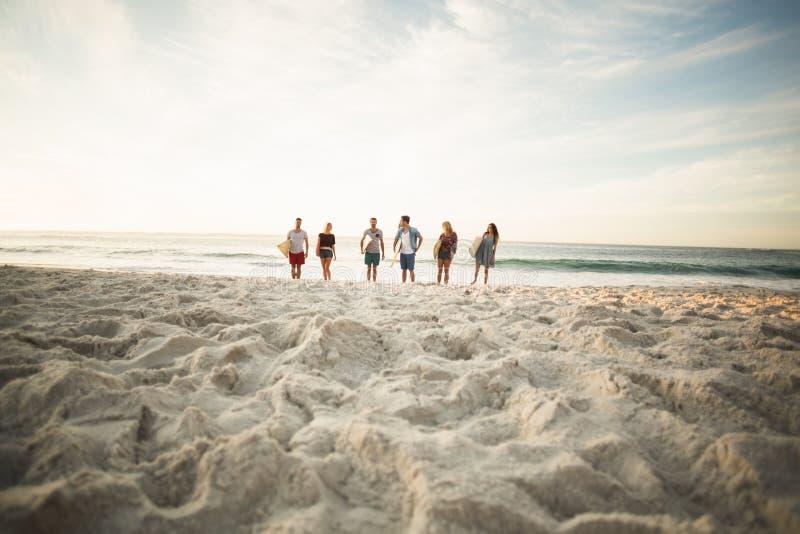 Vänner som rymmer surfingbrädan på stranden royaltyfri bild