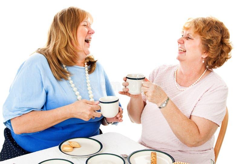 Vänner som skrattar över te royaltyfri bild