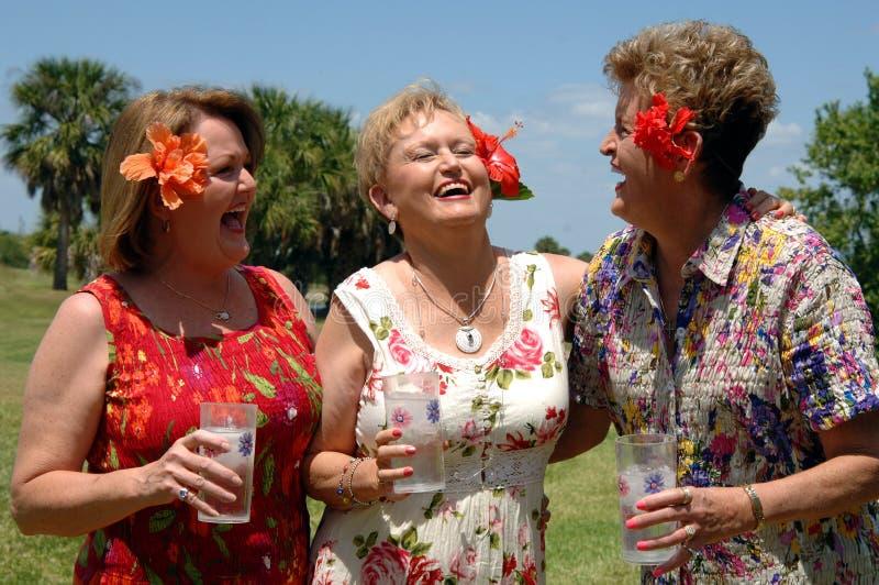 vänner som skrattar pensionären royaltyfri bild