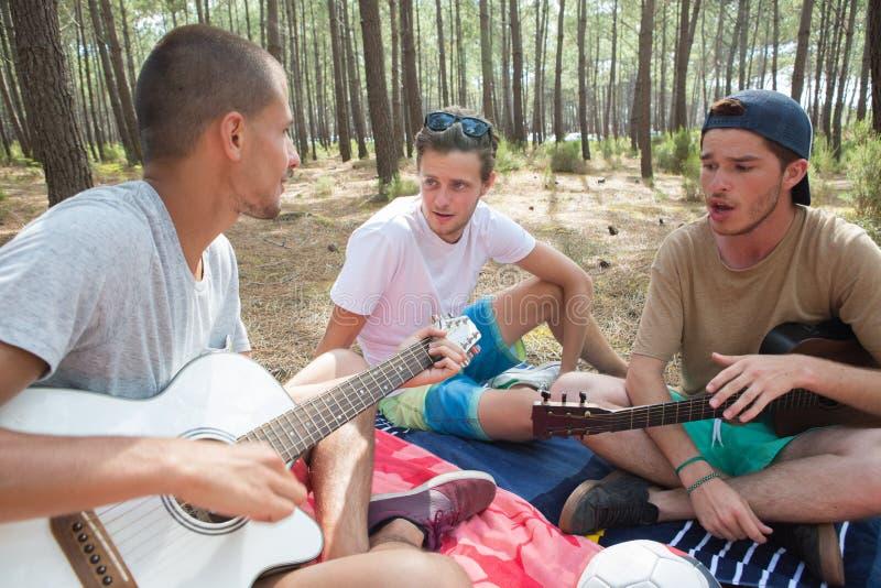 Vänner som spelar gitarren på stranden royaltyfri bild