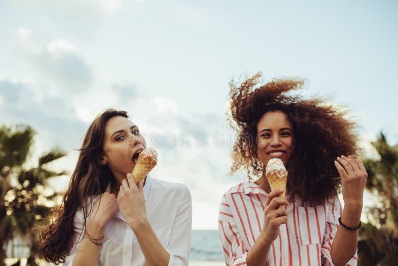 Vänner som tycker om äta glass royaltyfri bild