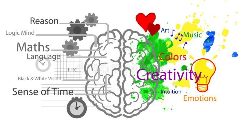 vänstert höger sida för hjärna stock illustrationer