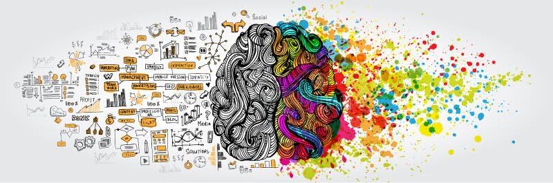 Vänstert högert begrepp för mänsklig hjärna Den idérika delen och logik särar med samkvämmen och affärsklotter royaltyfri illustrationer