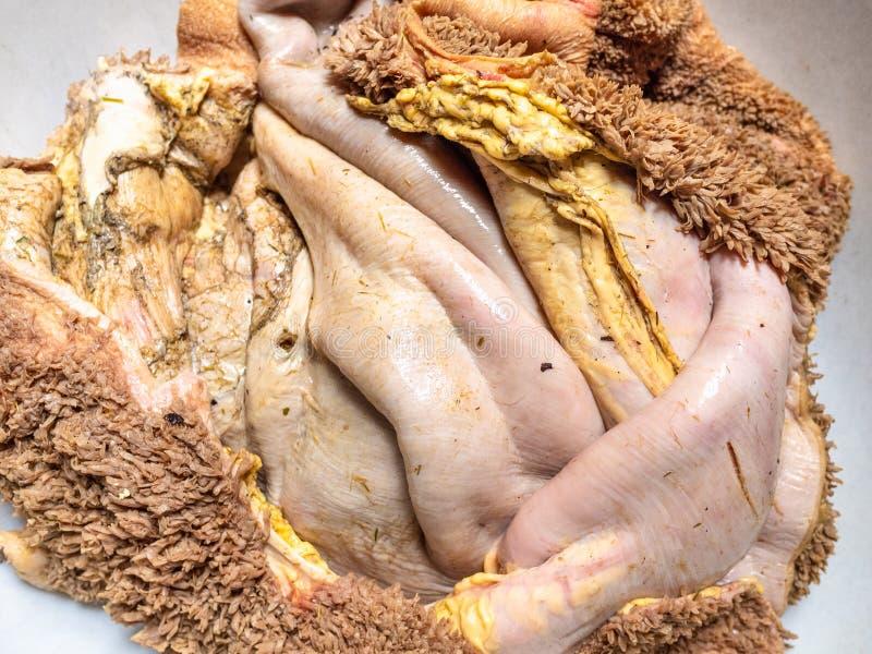 Vänt inom - tvättade ut rå nötköttkomagenärbild royaltyfria foton