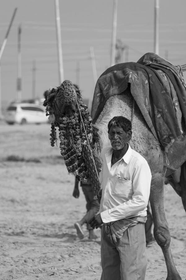 Väntande på ryttare för kamelryttare royaltyfri fotografi