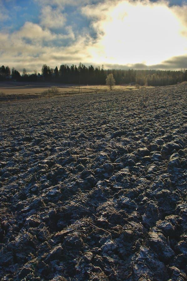 Väntande på vår för djupfryst fält arkivbilder
