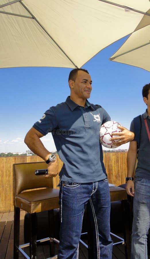 värld för fotboll för cafumästarekopp royaltyfria foton