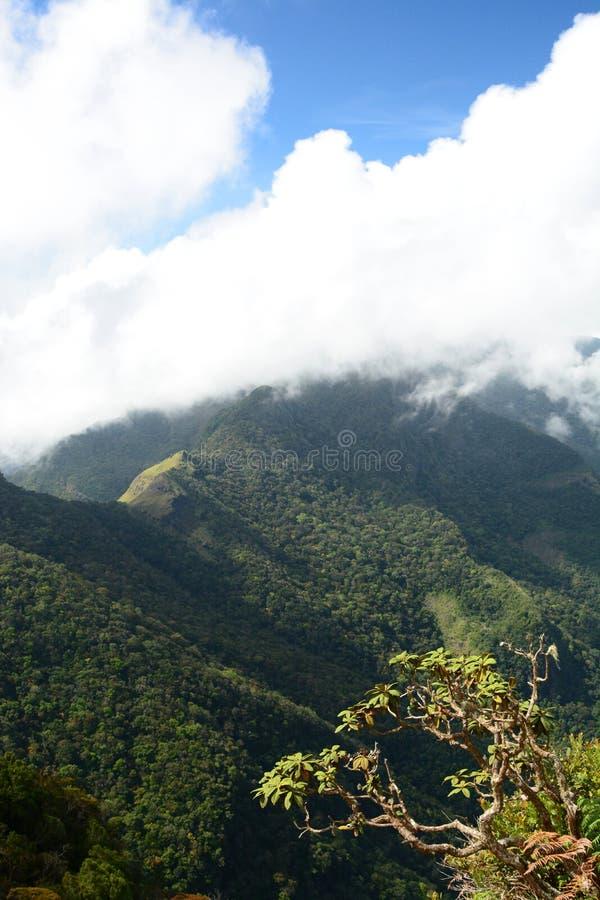 värld för slut s Horton Plains Sri Lanka fotografering för bildbyråer