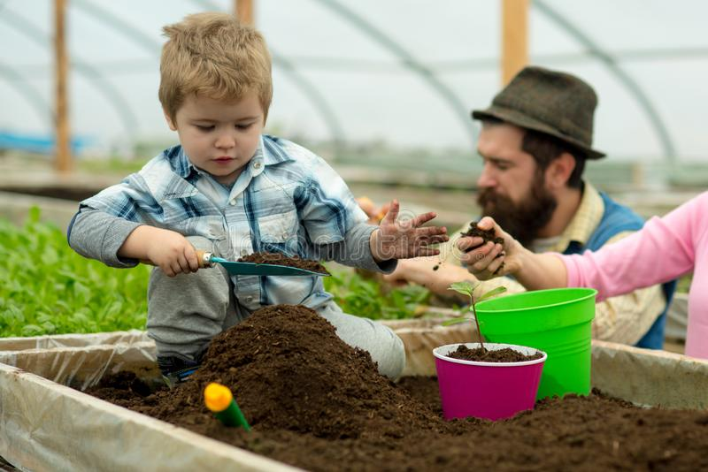 Världsmiljö ekologi för världsmiljö världsmiljö för lyckligt framtida liv familjkamp för värld royaltyfria foton