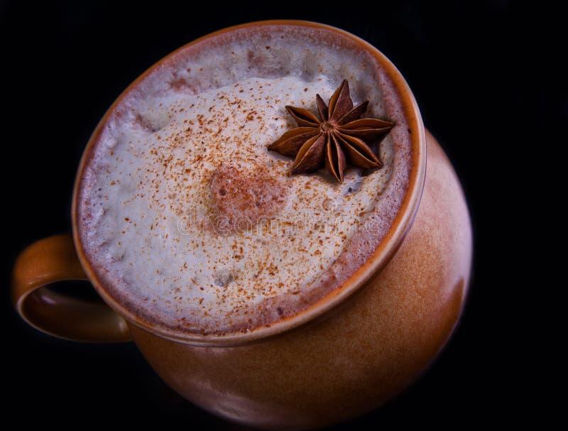 Värmecoctail för alkoholiserad vinter med kanel fotografering för bildbyråer